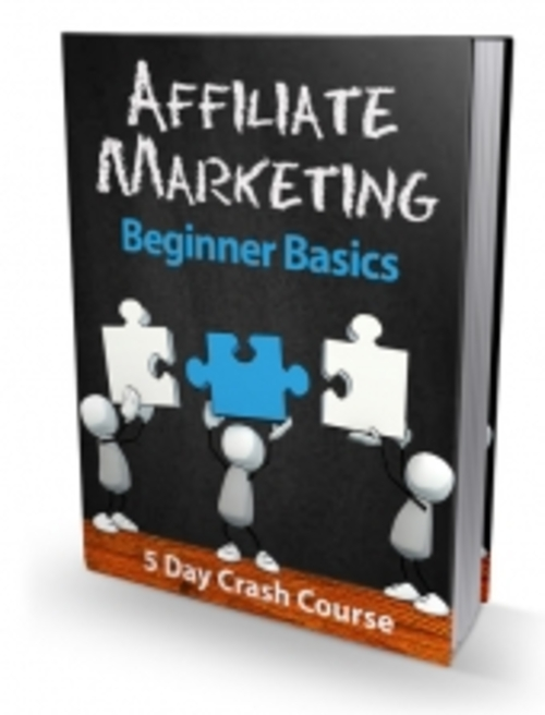 Product picture Affiliate Marketing Beginner Basics